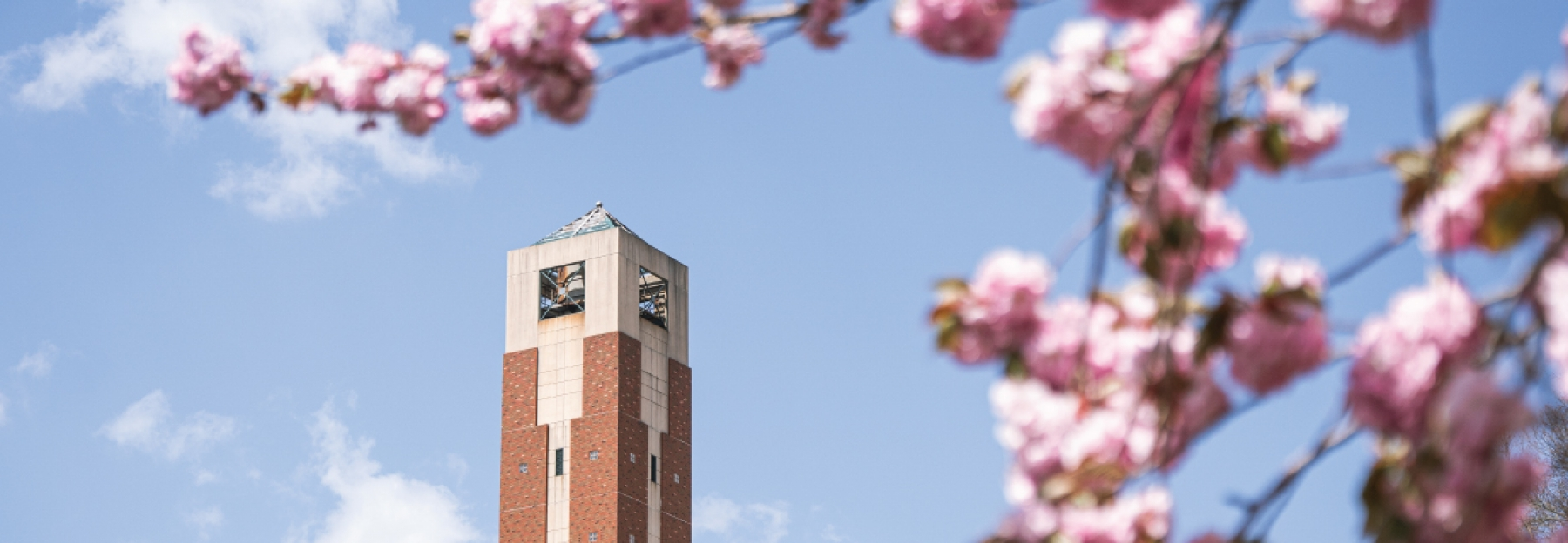 App State Bell Tower with spring flowers in view.