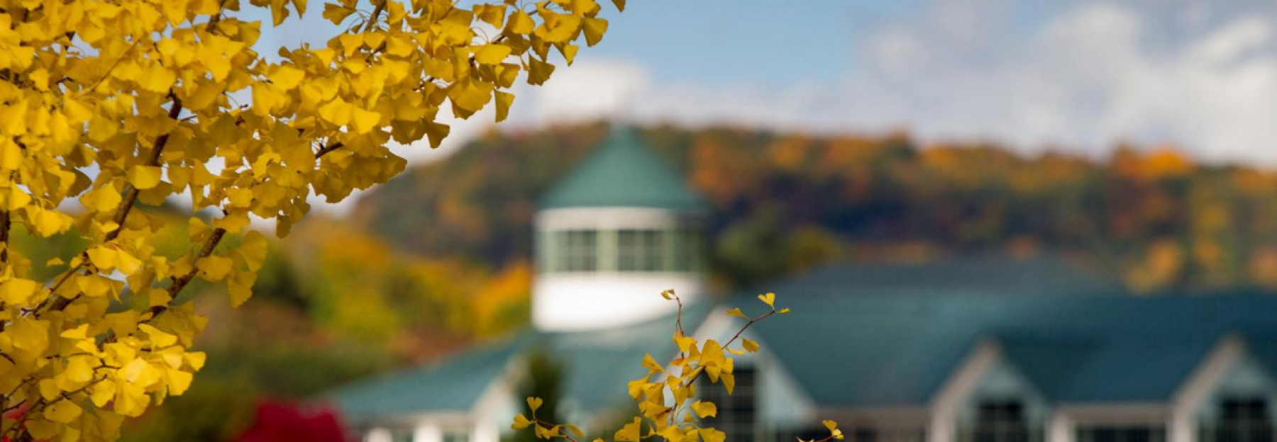 campus picture in the fall overlooking belk library
